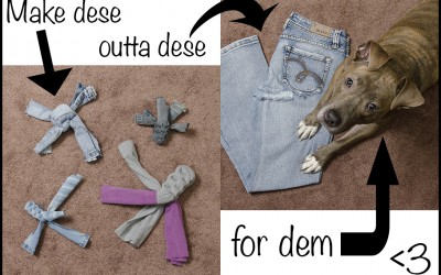 DIY Doggie Tug Toys Tutorial – Upcycle Your Jeans and Yoga Pants