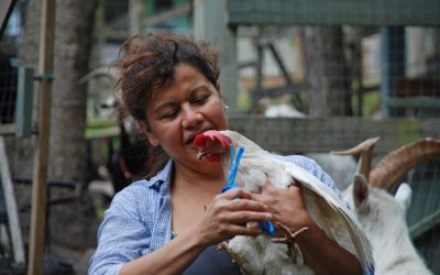 The Birth of an Animal Sanctuary with Sandra Cordero